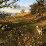 From the hills above the Village with Lucy