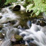 River Gwril
